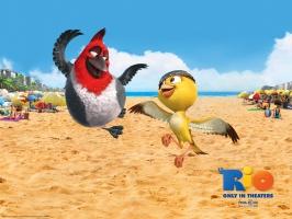 Pedro and Nico in Rio Movie