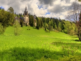 Peles Castle Wallpaper Romania World