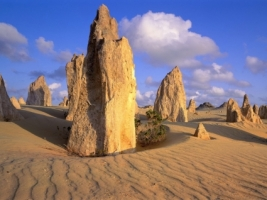 Pinnacles Desert Wallpaper Australia World