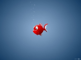 Piranha Wallpaper Miscellaneous Other