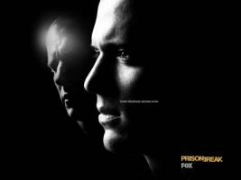 Prison Break revenge Wallpaper Prison Break Movies