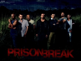 Prison Break Season 2 Wallpaper Prison Break Movies