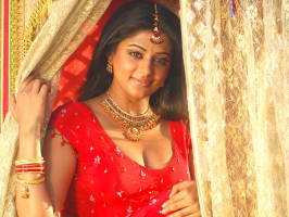 Priyamani in Tollywood Movie