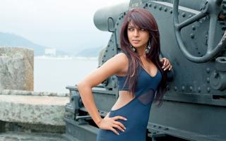 Priyanka Chopra 2016