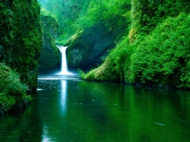 Punch Bowl Falls Wallpaper Waterfalls Nature