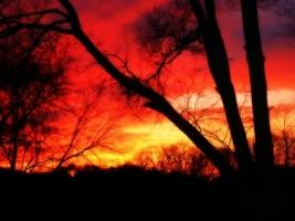 Red sunset Wallpaper Landscape Nature