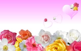 Roses & Love Hearts