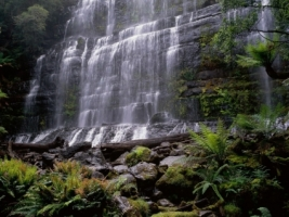 Russell Falls Wallpaper Australia World