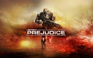 Section 8 Prejudice Game