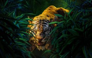 Shere Khan The Jungle Book