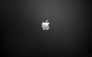 Shiney Steel Apple