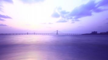 Shivaji Park Bridge Mumbai