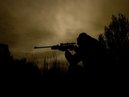 Shooter Wallpaper Miscellaneous Other