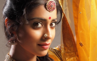 Shriya Saran Bollywood
