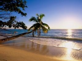 Silhouette Island Wallpaper Seychelles World