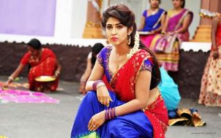 Sonarika Bhadoria in Saree