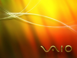 Sony VAIO 14