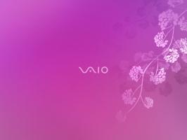 Sony VAIO 6