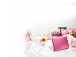 Sony VAIO Berry Pink