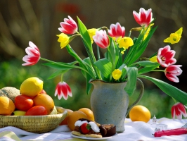Spring Melody