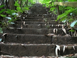 Stairs Wallpaper Miscellaneous Other