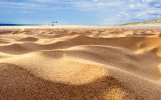 Summer Sand Dunes
