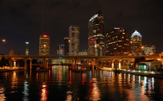 Tampa Bay Nights