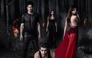 The Vampire Diaries Season 5 2013
