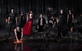 The Vampire Diaries TV series