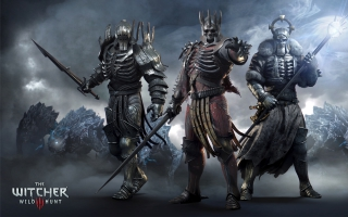 The Witcher 3 Wild Hunt Generals