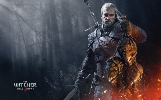 The Witcher 3 Wild Hunt Geralt Trophies