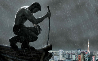 The Wolverine Movie