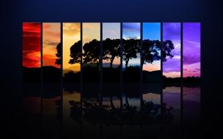 Tree Spectrum