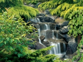 Vancouver Wallpaper Waterfalls Nature