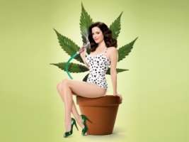 Weeds Season 4 Wallpaper Weeds Movies
