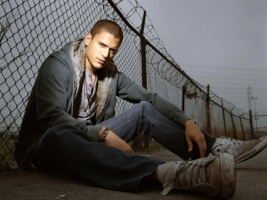 Wentworth Miller Wallpaper Prison Break Movies