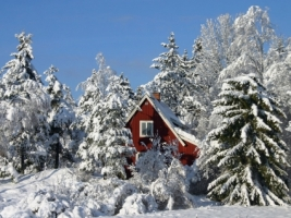 Winter in Sweden Wallpaper Winter Nature