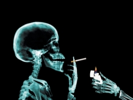 X Ray Wallpaper X Ray 3D