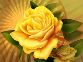 Yellow painted rose Wallpaper Miscellaneous Other