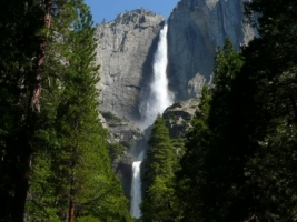 Yosemite Falls Wallpaper Waterfalls Nature